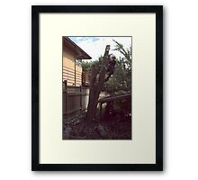 Taking Down the Holly Framed Print