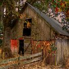 Sometimes We Dream ~ Lickskillet Road Barn by Charles & Patricia   Harkins ~ Picture Oregon