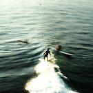 java surf 1 by wellman