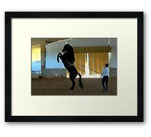 Menorcan Pure-Bred Dancing Horse Framed Print