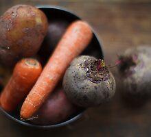 root veggies by ELENA TARASSOVA