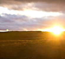 Northumberland Sunset by Roger McNally