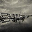 Grey Day by Steve Case