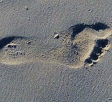 Footprint in the Sand by Wayne Gerard Trotman