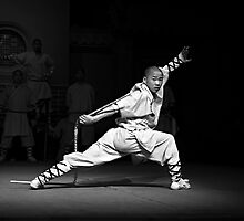 Kung Fu by Janette Anderson