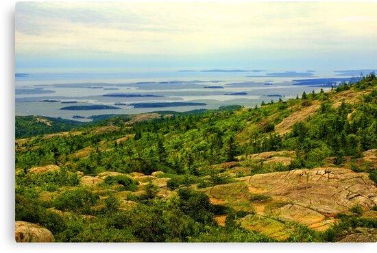 Cadillac Mountain, Acadia National Park, Maine, USA by fauselr