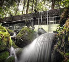Alfred Reagan's Tub Mill Overflow by Alex Banakas
