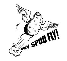 Fly, Spud, Fly! by Rosy Scally