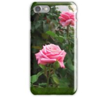 Pink Roses in Anzures 5  Blank P1F0 iPhone Case/Skin
