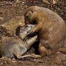 Cuddles with Mum by Krys Bailey