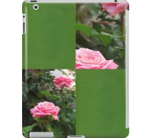 Pink Roses in Anzures 5  Blank Q5F0 iPad Case/Skin
