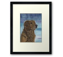 Goldie in the Snow Framed Print