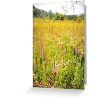 Chaparral Prairie in August Gold Greeting Card