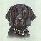 German Short haired Pointer by Jane Smith