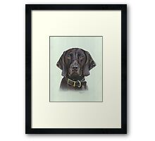German Short haired Pointer Framed Print