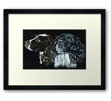 Brace of Springers Framed Print