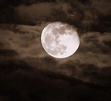 """""""Super-Moon"""" by Neville Hawkins"""