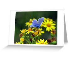 Blue on Yellow Greeting Card