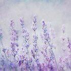 lavender romance by lucyliu