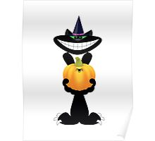 Black  cat with Halloween pumpkin on white background Poster