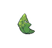 Pixelated Metapod by Julie Vinh