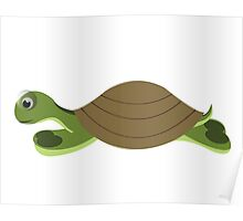 isolated big  green turtle on white background Poster