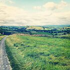 welsh countryside home by hollyjade3