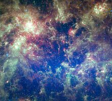 The Large Magellanic Cloud by Julie Vinh