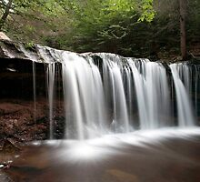 Oneida Waterfall Wearing A Summer Veil by Gene Walls