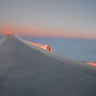 Orange Wing by GMNPhoto