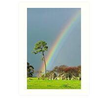 serious rainbow Art Print