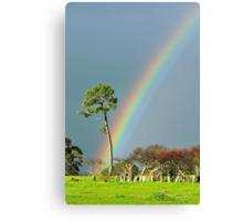 serious rainbow Canvas Print