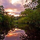 Sunrise at Davies Bridge by Lisa G. Putman