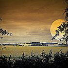 Harvest Moon by naturelover