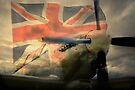 Grace Spitfire ML407 by Nigel Bangert