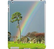 serious rainbow iPad Case/Skin