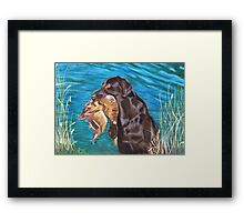 Duck Drive Framed Print