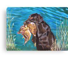 Duck Drive Canvas Print