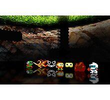 Dig Dug pixel art Photographic Print