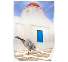 ..the local Pelican of Mykonos  {FEATURED} Poster