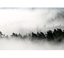 25.8.2013: Morning at Aulanko III Photographic Print