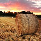 Straw bale at sunset by Rachel Slater