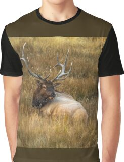 BEDDED DOWN Graphic T-Shirt