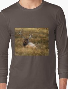 BEDDED DOWN Long Sleeve T-Shirt