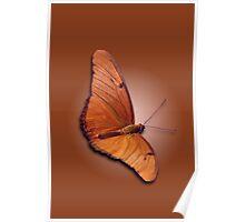 Julian Butterfly Poster