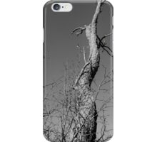 Graphite and Gray iPhone Case/Skin