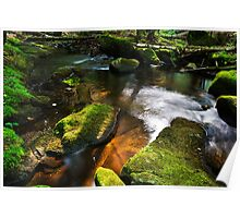 Moss Covered Rocks Poster