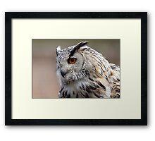Siberian Eagle Owl Framed Print
