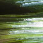 Fleeting Waves by Steve Belovarich