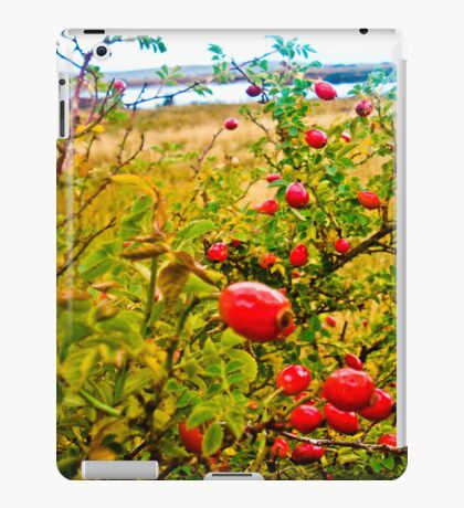 Nature red and green. iPad Case/Skin
